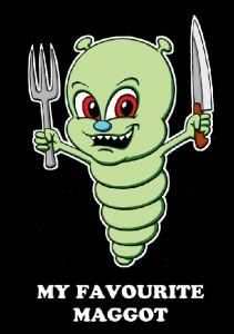 how to kill maggots